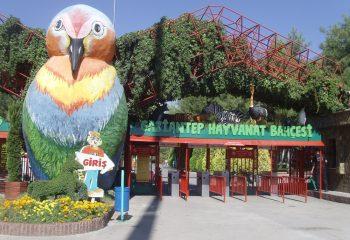 Türkiye'nin En Büyük 5 Hayvanat Bahçesi